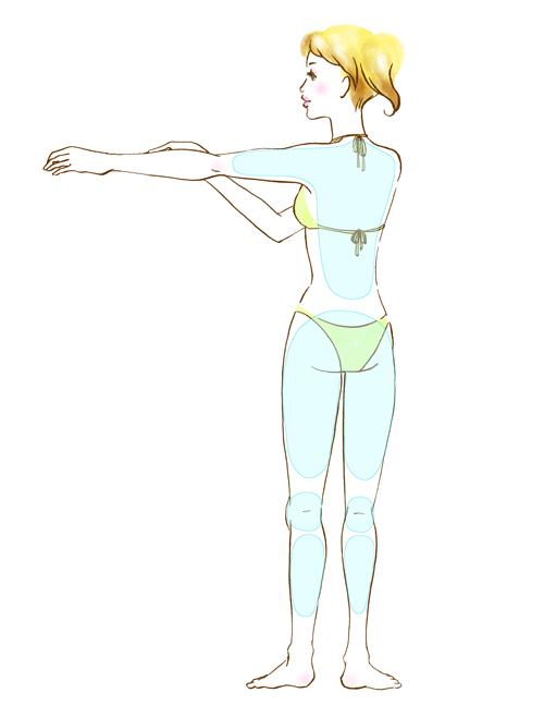 女性の背面(全身)